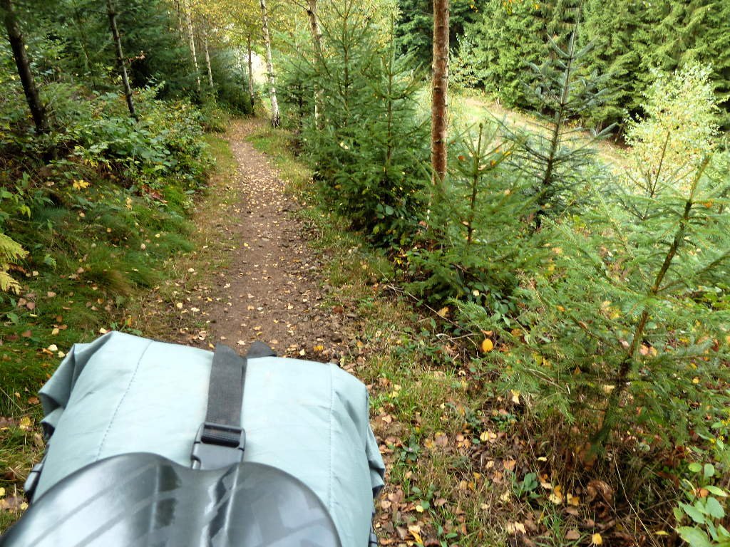westweg-trail-look-back